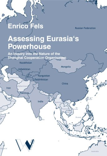 9783899111071: Assessing Eurasia's Powerhouse: An Inquiry into the Nature of the Shanghai Cooperation Organisation