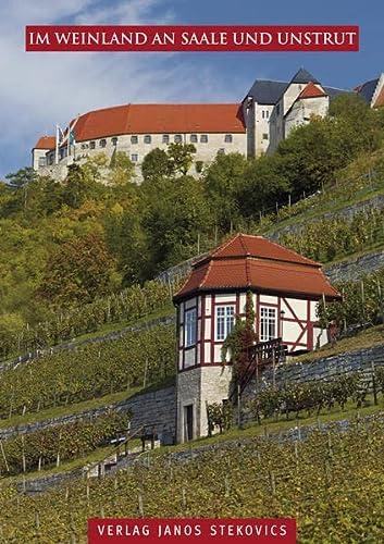 9783899230864: Im Weinland an Saale und Unstrut
