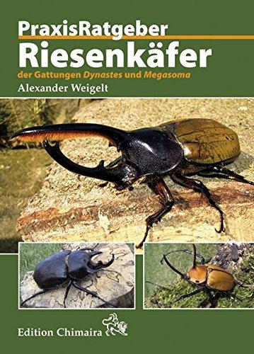 Riesenkäfer der Gattungen Dynastes und Megasoma (Hardback): Alexander Weigelt