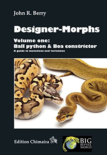 9783899734867: Designer-Morphs, Volume One: Ball Python and Boa Constrictor, A Guide to Mutations and Variations
