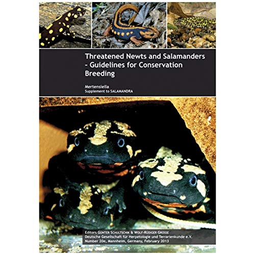 Threatened Newts and Salamanders - Guidelines for Conservation Breeding: G�nter Schultschik