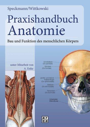 9783899968491: Praxishandbuch Anatomie: Bau und Funktion des ...