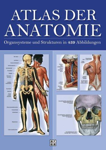 9783899968507: Atlas der Anatomie. Organsystem und Strukturen in 439 ...