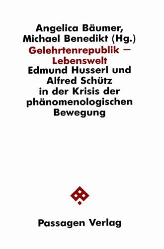 Stock image for Gelehrtenrepublik - Lebenswelt: Edmund Husserl und Alfred Schütz in der Krisis der phänomenologischen Bewegung for sale by A Book By Its Cover