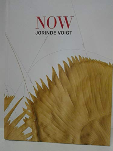 9783901261640: Jorinde Voigt: Now by Wolfgang Astelbauer (2015-12-01)