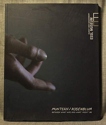 9783902001467: Muntean / Rosenblum : between what was and what might be ; anlässlich der Ausstellung Muntean / Rosenblum ..., 12.09.08-01.02.09