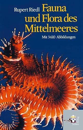9783902406606: Fauna und Flora des Mittelmeeres