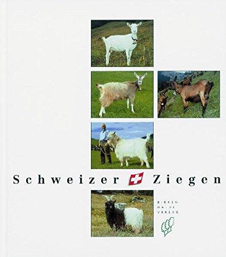 Schweizer Ziegen Weiss, Urs