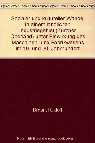 Sozialer und kultureller Wandel in einem ländlichen Industriegebiet im 19. und 20. Jahrhundert (...