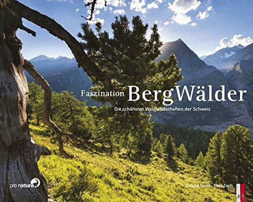 9783906055350: Faszination Bergwälder - DieschönstenWaldlandschaftenderSchweiz