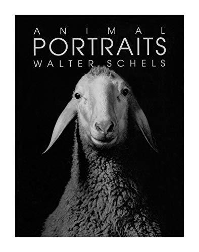9783908163459: Animal Portraits