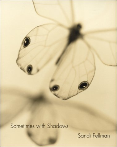 9783908163824: Sometimes with Shadows