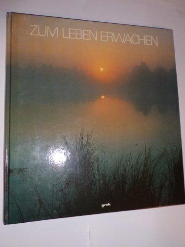 Zum Leben erwachen : ein meditatives Bilderbuch: Klever, Peter und