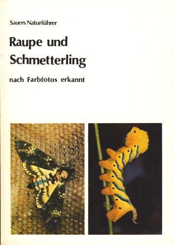 9783923010004: Raupe und Schmetterling. Nach Farbfotos erkannt ...