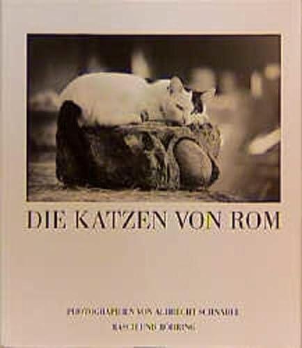 9783924044732: Die Katzen von Rom