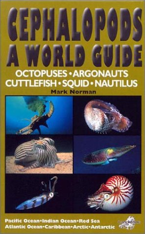 Cephalopods: A World Guide: Mark Norman