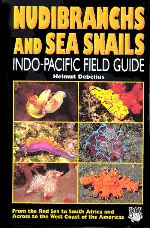 9783925919510: Nudibranchs and Sea Snails: Indo-Pacific Field Guide
