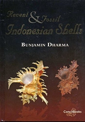 9783925919701: Recent & Fossil Indonesian Shells