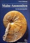 9783926129079: Malm-Ammoniten: Bestimmungsatlas der Gattungen und Untergattungen aus dem Oberjura Suddeutschlands, der Schweiz, und angrenzender Gebiete (German Edition)