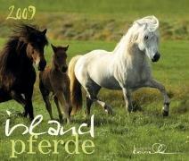 9783927589575: Island Pferde 2009