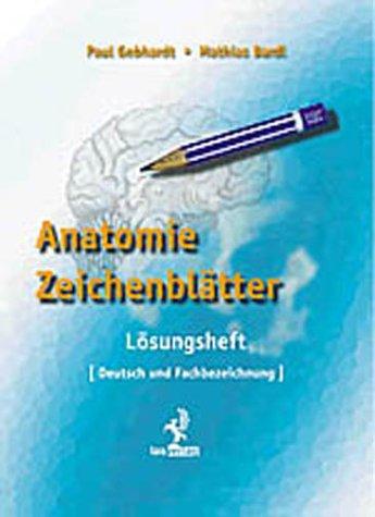 9783928537421: Anatomie Zeichenblätter. Lösungsheft.