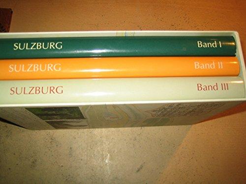 9783929140026: Geschichte der Stadt Sulzburg