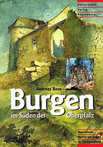 9783930480036: Burgen im Süden der Oberpfalz: Die früh- und hochmittelalterlichen Befestigungen des Regensburger Umlandes (Regensburger Studien und Quellen zur Kulturgeschichte)