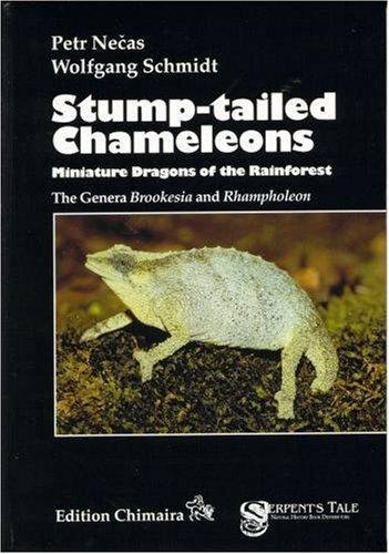 9783930612598: Chimaira Stump-tailed Chameleons