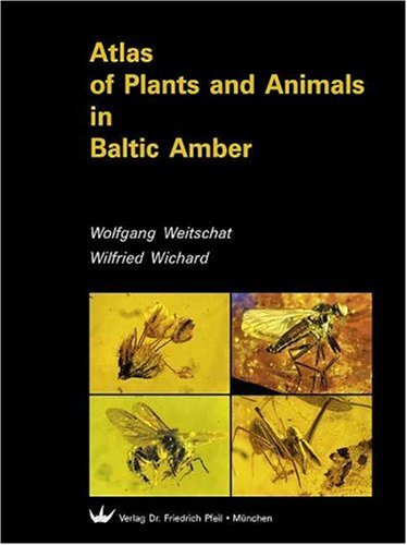 9783931516949: Atlas of Plants and Animals in Baltic Amber