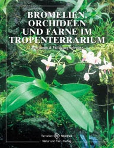 9783931587529: Bromelien, Orchideen und Farne im Tropenterrarium