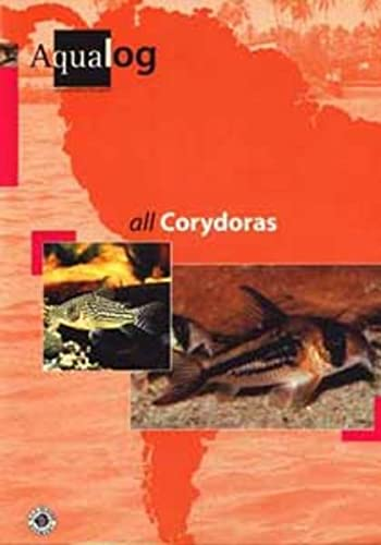 9783931702137: All Corydoras