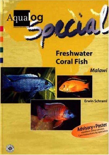Freshwater Coral Fish: Cichlids from Lake Malawi (AQUALOG Special): Erwin Schraml