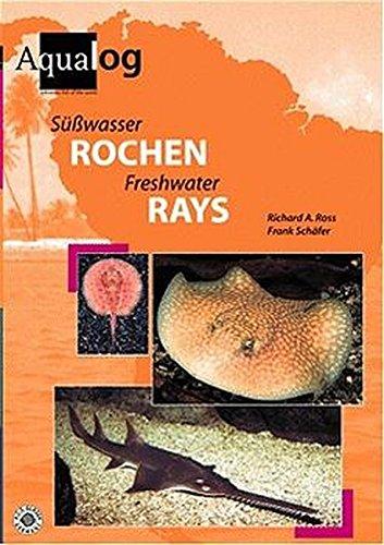 9783931702939: Aqualog Freshwater Rays