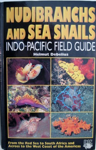 9783931702984: Nudibranchs and Sea Snails: Indo-Pacific Field Guide