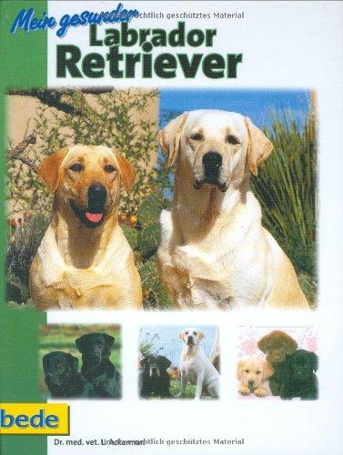 9783931792619: Mein gesunder Labrador Retriever
