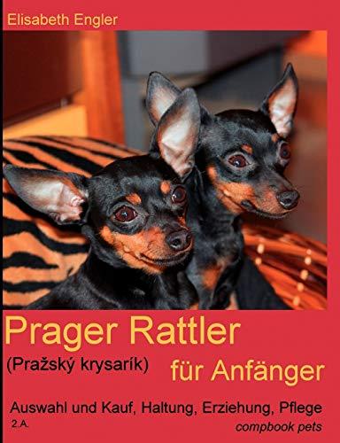 Prager Rattler (Prazský krysarík) für Anfänger: Auswahl und Kauf, Haltung, ...