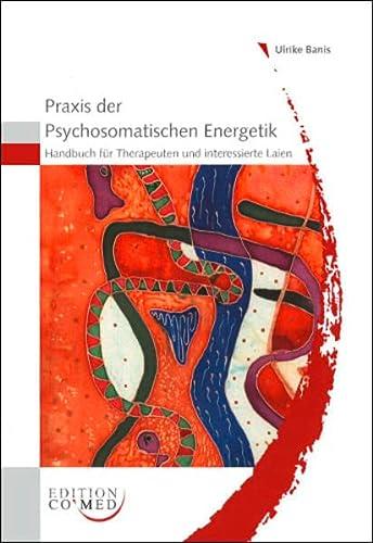 Praxis der Psychosomatischen Energetik - Handbuch für Therapeuten und interessierte Laien: ...