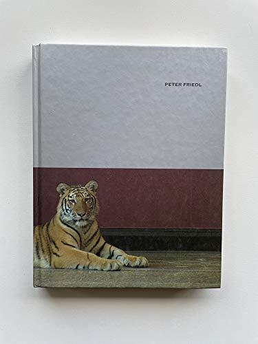 Peter Friedl [15. Dezember 2001 - 24.: Schmidt, Eva (Herausgeber):
