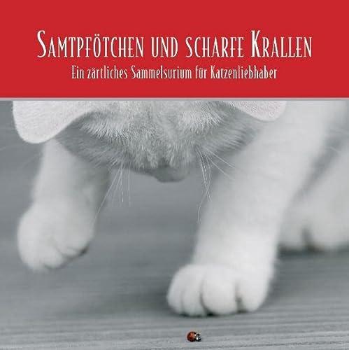 Samtpfà ¶tchen und scharfe Krallen. 2 CDs: Proust, Marcel