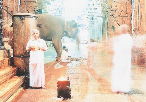 XXX Holy: Journeys into the Spiritual Heart of India: Bialobrzeski, Peter