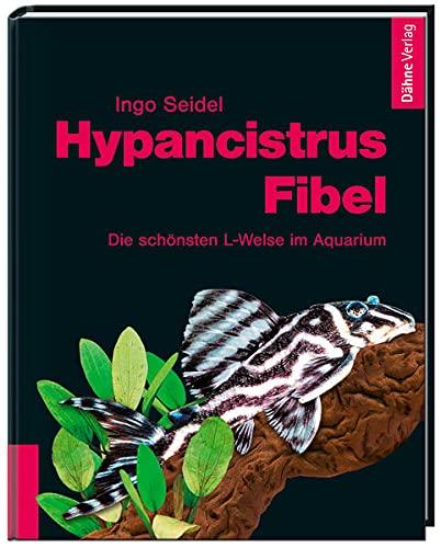 9783935175616: Hypancistrus-Fibel