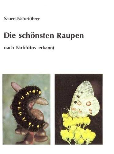 9783935980043: Die schönsten Raupen - nach Farbfotos erkannt