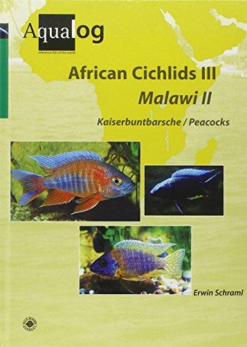 9783936027594: Aqualog African Cichlids III, Malawi II - Peacocks