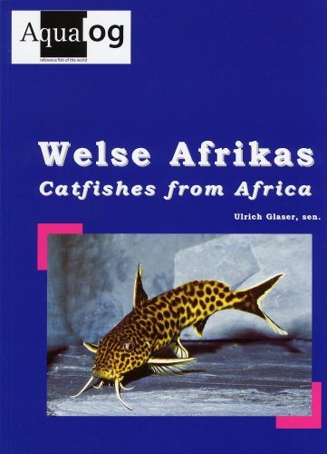 9783936027648: Aqualog, Catfishes from Africa