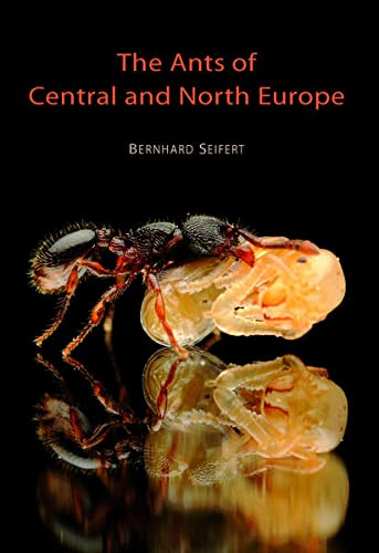 9783936412079: The Ants of Central and North Europe