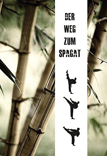 9783936457667: Der Weg zum Spagat: Stretchingmethoden für Anfänger und Profis