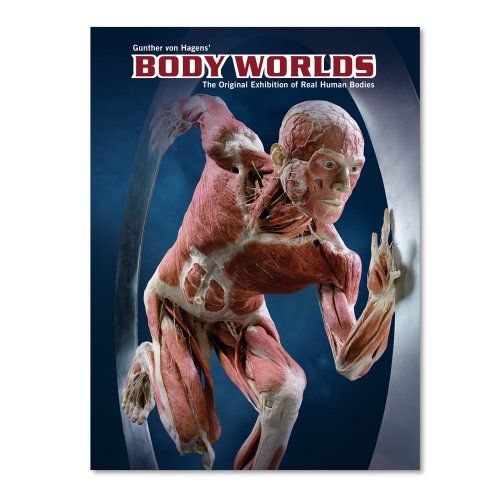 9783937256092: Body Worlds - The original exhibition of real human bodies