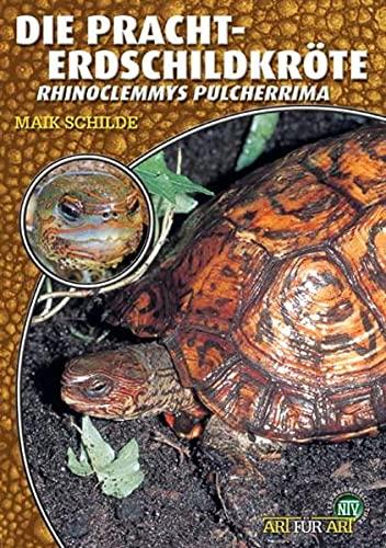 9783937285337: Die Pracht-Erdschildkröte: Rhinoclemmys pulcherrima