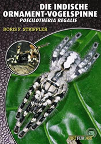 Die Indische Ornament-Vogelspinne: Boris F. Striffler