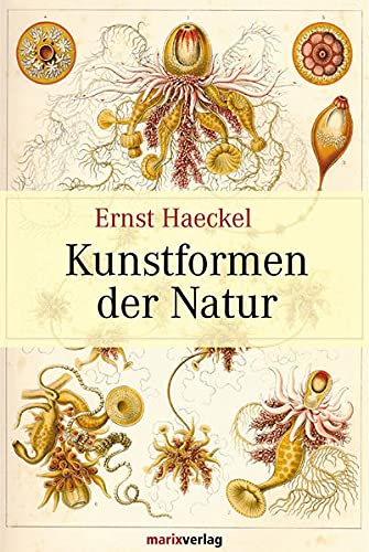 9783937715179: Kunstformen der Natur